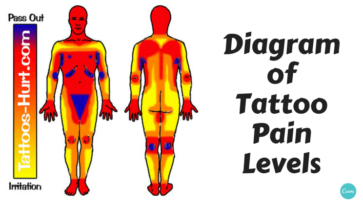 Diagram Of Tattoo Pain Hotspots  Chart