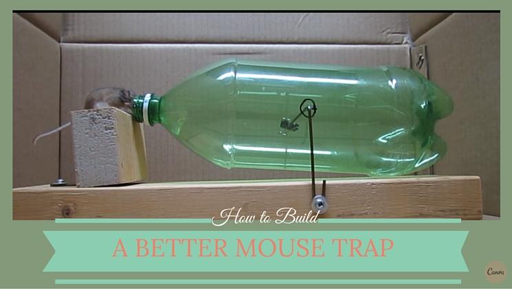how to build a better more humane mouse trap video alltop viral. Black Bedroom Furniture Sets. Home Design Ideas